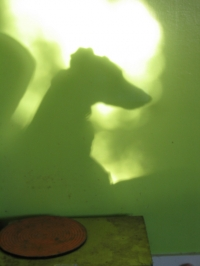 Nigel s shadow over Reyna s dining area, 2007